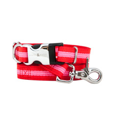 Bronte Nylon Collar & Lead Set - Red / Pink