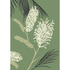 Grevillea art print in green