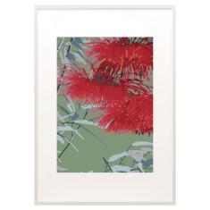 Flowering gum print
