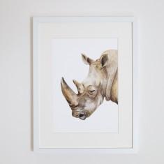 Reg the Rhino print