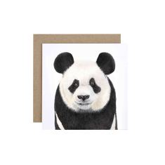 Panda greeting card (pack of 5)