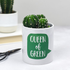 Queen of Green Plant Pot