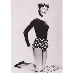 Audrey Hepburn spots vintage poster print