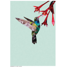 Geometric hummingbird print