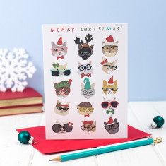 Cats Christmas cards (pack of 5)