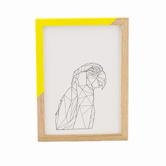 Geometric macaw print (unframed)