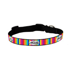 Personalised dog collar in rainbow