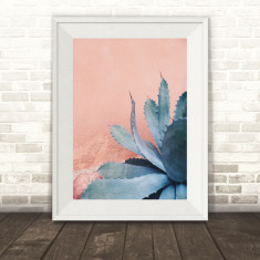Blushing Agave Photography Print