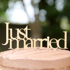 Wooden just married cake topper