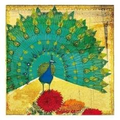 Peacock instinct