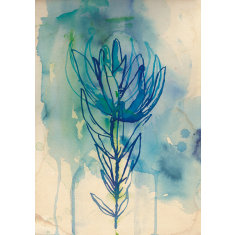 Blue wash protea print