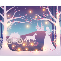 Cinderella illuminated canvas