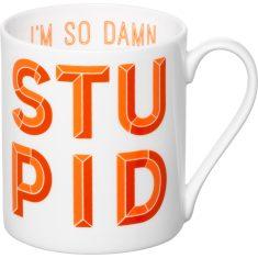 I'm so damn stupid mug