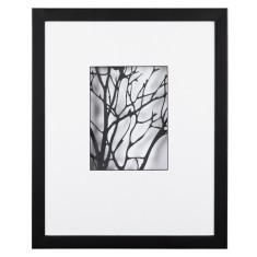Branches noir 1