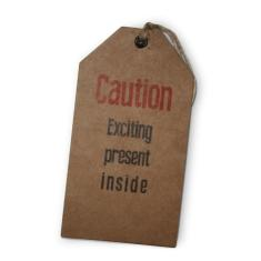 Caution exciting gift tags (set of 6)
