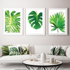Botanic beauties art prints (set of 3)