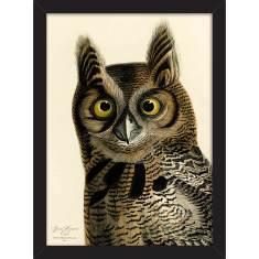 The Horned Owl Print