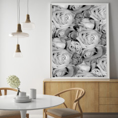 Roses Limited Edition Fine Art Print