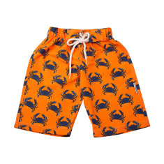 Boys' chlorine-resistant boardshorts in Sandcrabs Popsicle