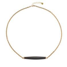 Horn Dakota necklace