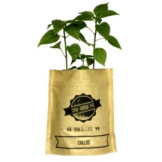 Chillies herb in a bag