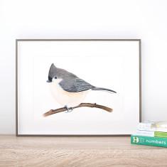 Songbird Print