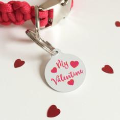 My Valentine pet ID tag