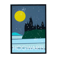 Harry Potter theme framed print (various designs)