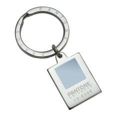 Pantone chip keyring