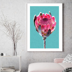 Protea teal art print