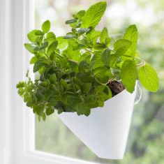 Hanging gardens planters (two pack)