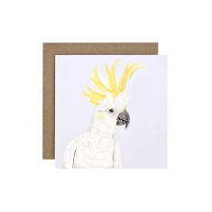 Cockatoo Greeting Card (pack of 5)