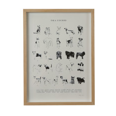 The a - z of dogs screenprint on paper