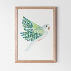Budgie Watercolour Fine Art Print