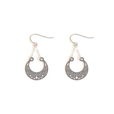 Stainless Steel Aroura Earring
