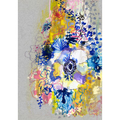 Blue anemone limited edition print