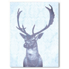 Stag blue Canvas Art