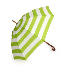 Umbrella in lime stripe