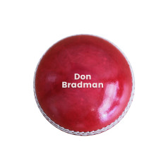 Personalised Cricket Ball