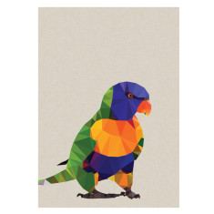 Rainbow Lorikeet art print