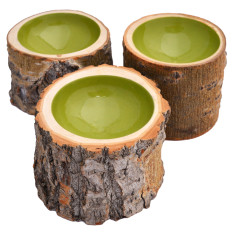 Kiwi lacquered log bowl