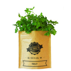 Parsley herb in a bag
