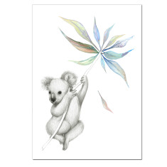 Koala Australiana Print