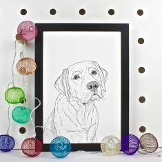 Labrador Dog Line Portrait Print