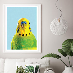 Green budgie art print