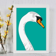 Swan Portrait Illustration Print