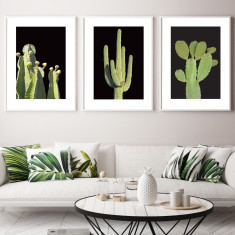 Desert nights art prints (set of 3)