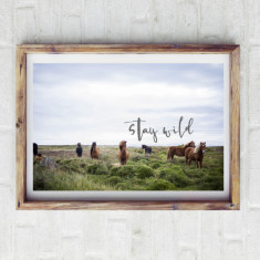 Stay wild horse print