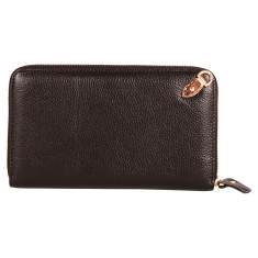 Great Expectations wallet/clutch