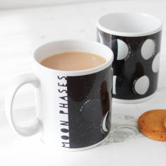 Moon phases educational mug